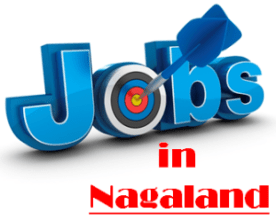 Current Jobs in Nagaland