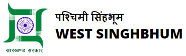 DHS West Singhbhum Recruitment