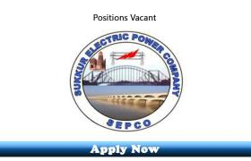 51 New Posts in Sukkur Electric Power Company SEPCO 2019 Apply Now