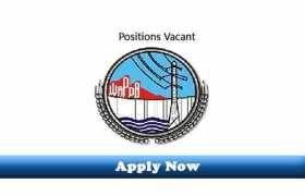 Jobs in WAPDA Medical Services 2020