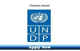 UNDP Jobs 2020