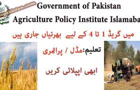 Jobs in Agriculture Policy Institute Islamabad 2020