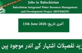 Jobs in BIWRMDP Balochistan 2020