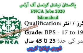 Jobs in Pakistan National Council of the Arts 2020