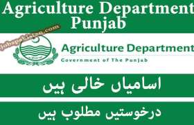 Agriculture Department Punjab Jobs 2020