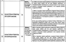 Jobs in Allama Iqbal Medical College & Jinnah Hospital Lahore 2020