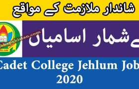 Cadet College Jehlum Jobs 2020