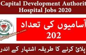 Capital Development Authority Jobs 2020