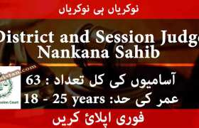 Jobs in Office of District and Session Judge Nankana Sahib 2020