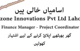 Vizone Innovations Pvt Ltd Lahore Jobs 2020