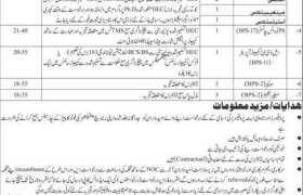 Begum Nusrat Bhutto Women University Sukkur Jobs 2020