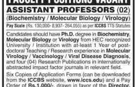 International Center For Chemical and Biological Sciences University of Karachi Jobs 2020