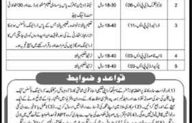 Directorate General Law and Human Rights Khyber Pakhtunkhwa Jobs 2020