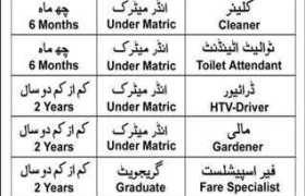 Prime Human Resource Services Private Limited Peshawar Jobs 2020