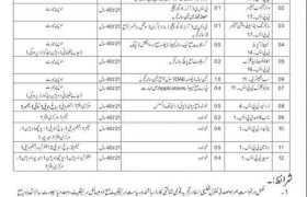 Secretariat Agriculture Livestock and Irrigation Department Azad Jammu Kashmir Jobs 2020
