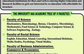 Jinnah University for Women Jobs 2020