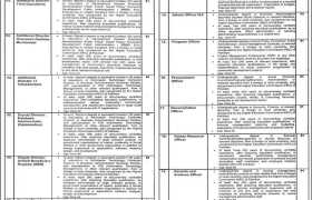 Planning & Development Board of Punjab Human Capital Investment Project Jobs 2020