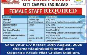 The Smart School City Campus Faqirabad Peshawar Jobs 2020