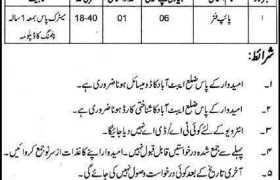 Public Health Engineering Abbottabad Jobs 2020