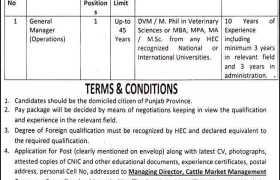 Cattle Market Management Company Jobs 2020