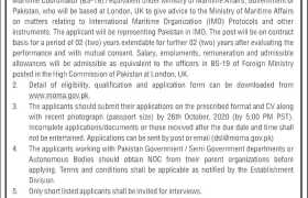 Ministry of Maritime Affairs Jobs 2020