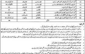 Education Department Nankana Sahib Jobs 2020