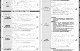 NUMS Rawalpindi Jobs 2020