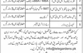 Telegardens Islamabad Jobs 2020