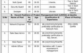 Project Management Unit Jobs 2020