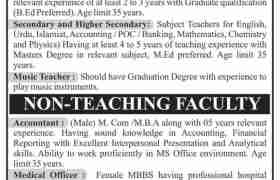 Shah Abdul Latif Education Trust Jobs 2020