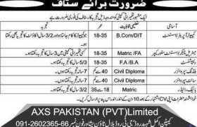 AXS Pakistan Pvt Ltd Jobs 2020