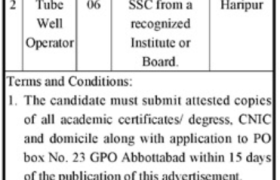 Government Org Abbottabad Jobs 2020