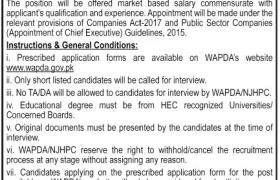 WAPDA / NJHPC Jobs 2020