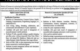 Emerging Pakistan Cell Islamabad Jobs 2021