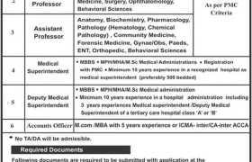 Mohi-ud-Din Islamic University AJK Jobs 2021