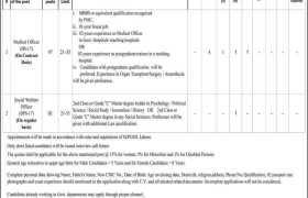 Shaikh Zayed Hospital Lahore Jobs 2021
