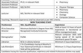 Jobs in The Next College Multan 2021