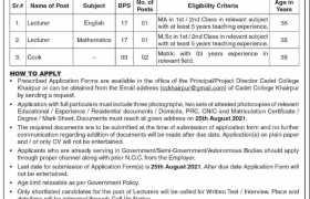 Jobs in Cadet College Khairpur 2021