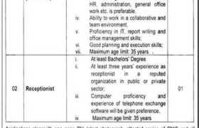 Program Implementation Unit Punjab Jobs 2021