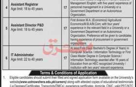 Shuhada-e-APS University Nowshehra Jobs 2021