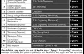 Jobs in SYNGRO Lahore 2021