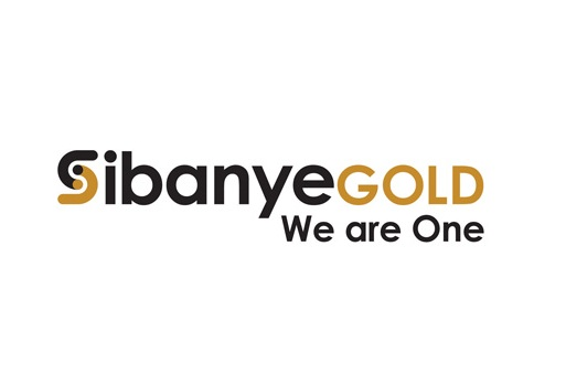 Bursary Programme at Sibanye Gold