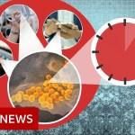 Coronavirus: More myths to ignore – BBC News