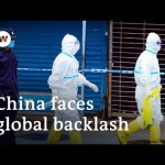 German tabloid 'Bild' demands China pay coronavirus damages | DW News