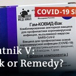 Russia's Sputnik V vaccine: What the specialists say | COVID-19 Particular