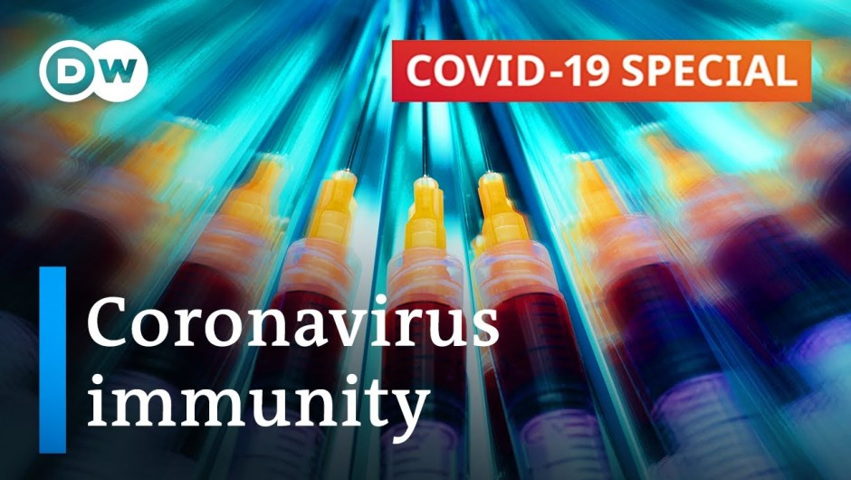 Coronavirus immunity: What do we all know?   COVID-19 Particular