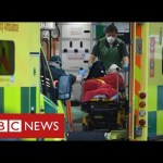 80,000 Covid deaths in UK as scientists name for stricter lockdown – BBC Information