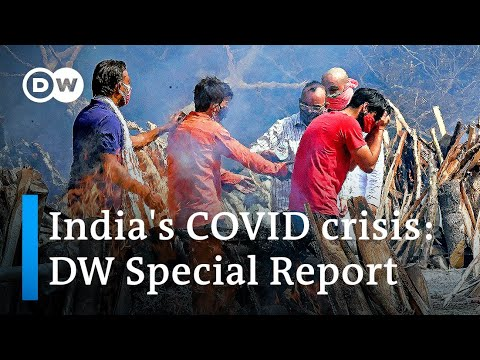 India's COVID disaster: How did it occur and what to anticipate | DW Particular Report