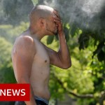 Dozens useless as Canada heatwave shatters temperature information – BBC Information
