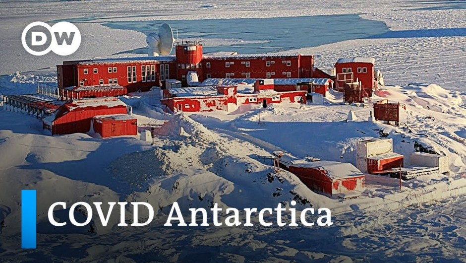 COVID-19 lastly reaches Antarctica | Coronavirus Replace